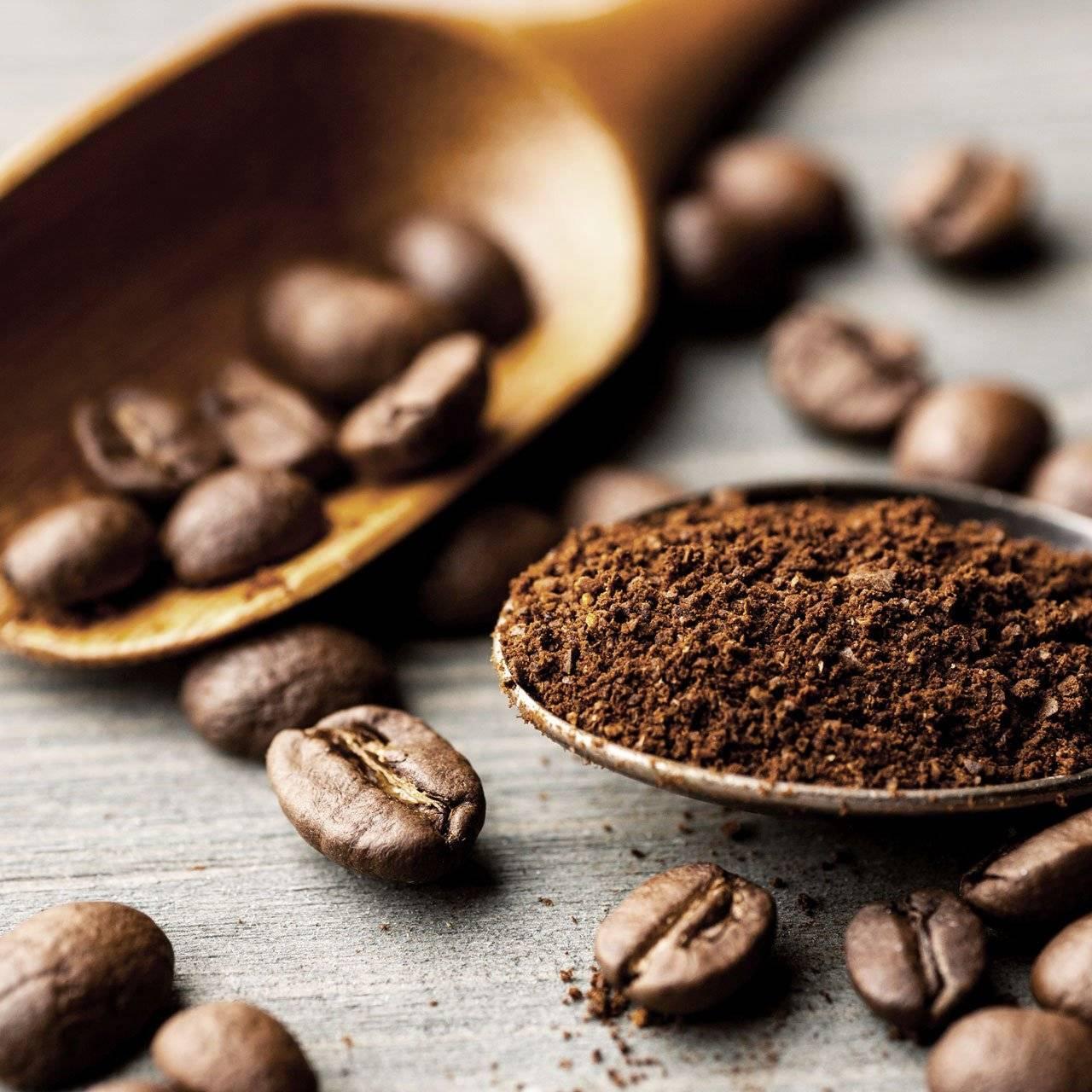 Caffè Pertè - Caffè Macinato e Granuli - Eijiro Matsumi Limited